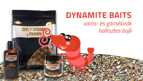 Dynamite Baits Spicy Shrimp & Prawn bojli 1kg 20mm